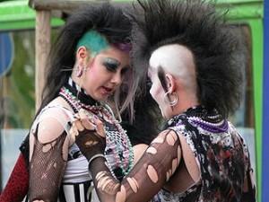 Punk Peacock Pain