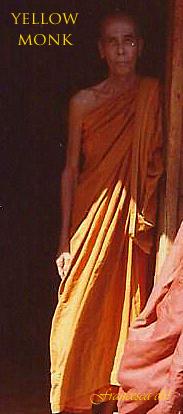 Yellow Monk